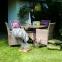 Кресло садовое Wicker из искусственного ротанга в ассортименте 3